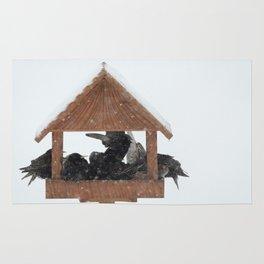 Birds survival Rug