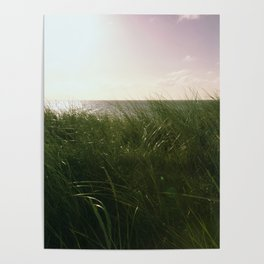 silent sea Poster
