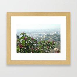 Hollywood Dreams Framed Art Print