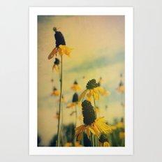 Summer Sunshine Art Print
