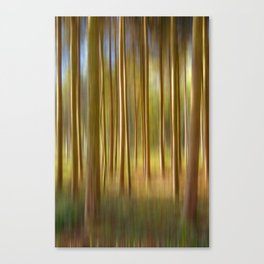 Concept nature : Magic woods Canvas Print