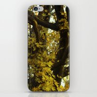 fibonacci iPhone & iPod Skins featuring Fibonacci by Monica Ortel ❖