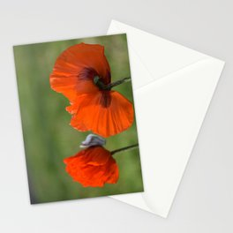 PRETTY POPPIES IN THE LATE AFTERNOON SPRING SUNSHINE Stationery Cards