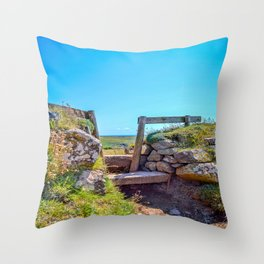 Lizard Walk - Wooden Stile Throw Pillow