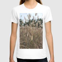 Sangumburi silver grass field in Jeju, Korea. T-shirt