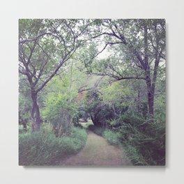 Wander - II Metal Print