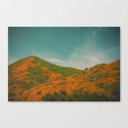 California Poppies 027 Canvas Print