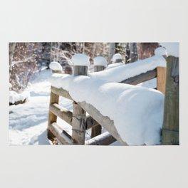 Winter Fence Rug
