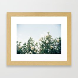 Neutral Spring Tones Framed Art Print