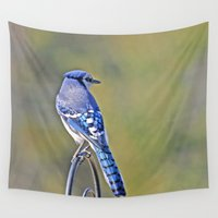 jay fleck Wall Tapestries featuring Blue Jay by Roger Lupton
