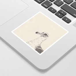 Albatross Sticker