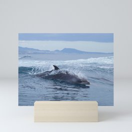Dolphin: love for waves, love for life Mini Art Print