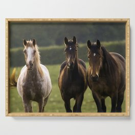 Horses on a meadow Serving Tray