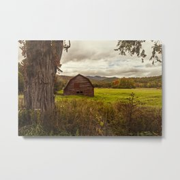 an adirondack icon Metal Print