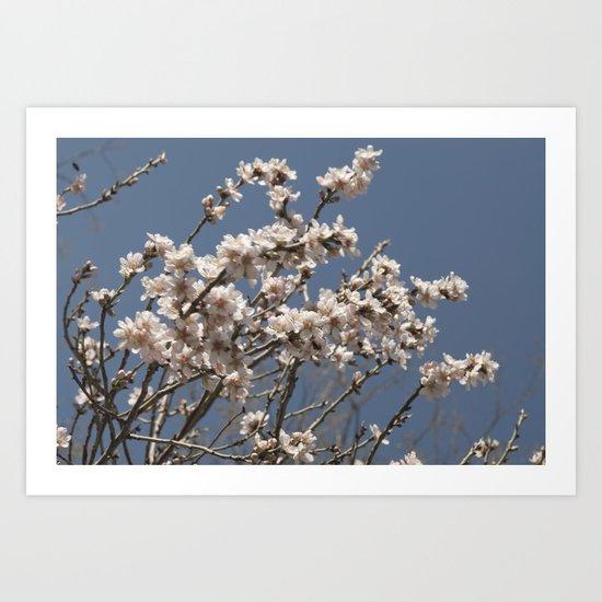 it's spring Art Print