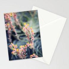 Echeveria #2 Stationery Cards