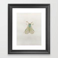 Moth Illustration  Framed Art Print