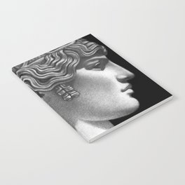 Antinous Notebook