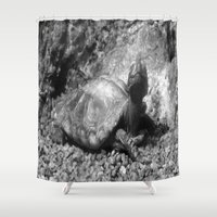 cheese Shower Curtains featuring Cheese! by Amy C Peters