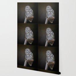 Lovely cute owl Wallpaper