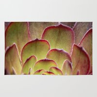 succulent Area & Throw Rugs featuring Succulent by Shy Photog