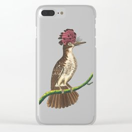 Crested Tody Clear iPhone Case