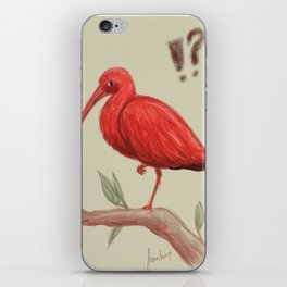 Who are you calling a flamingo? iPhone Skin
