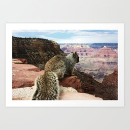Squirrel Overlooking Grand Canyon Art Print