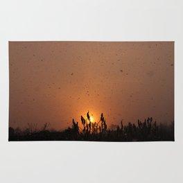 Sun by Snow 1 Rug