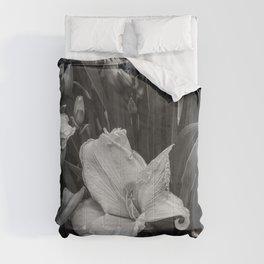 Orange Daylilies bw Comforters