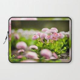 Bellis perennis pomponette called daisy Laptop Sleeve