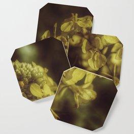 Yellow Soft Tones Coaster