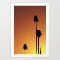 Redscale Art Print