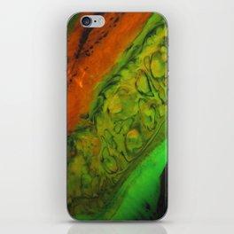 Dragon skin 1 iPhone Skin