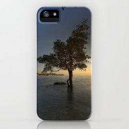 Tropical Sunrise iPhone Case