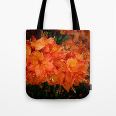 Give me an Orange, Julius Tote Bag