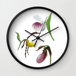 Lady Slippers of the Adirondacks Wall Clock