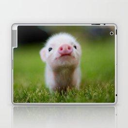 Little Pig Laptop & iPad Skin