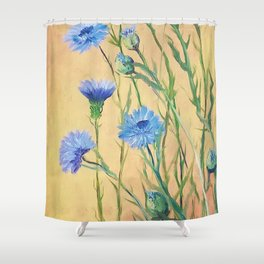 Bachelor Buttons, Flower Painting, by Faye Shower Curtain