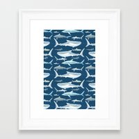 sharks Framed Art Prints featuring Sharks by Miranda Montes