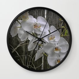 White Moth Orchid Wall Clock