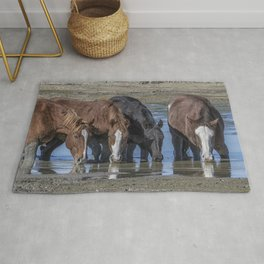 Mustangs Sharing What's Left of the Water Rug