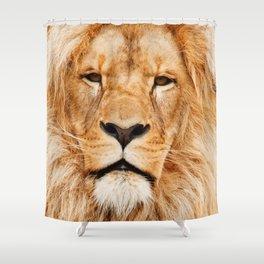 Lion Portrait Photograph Shower Curtain