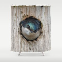 Meeting the New Nestbox Homeowner Shower Curtain