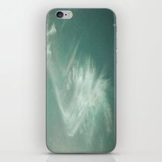 Frontiers iPhone & iPod Skin