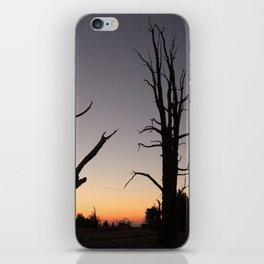 Bristlecone 7 iPhone Skin