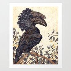 Silvery Cheeked Hornbill Art Print