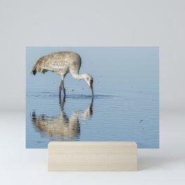 Sandhill Crane and Reflection Mini Art Print
