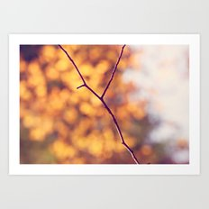Autumn Branch Art Print