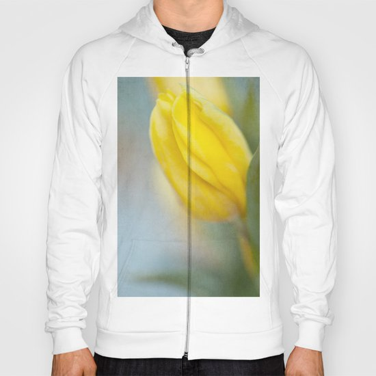 Almost Spring Hoody